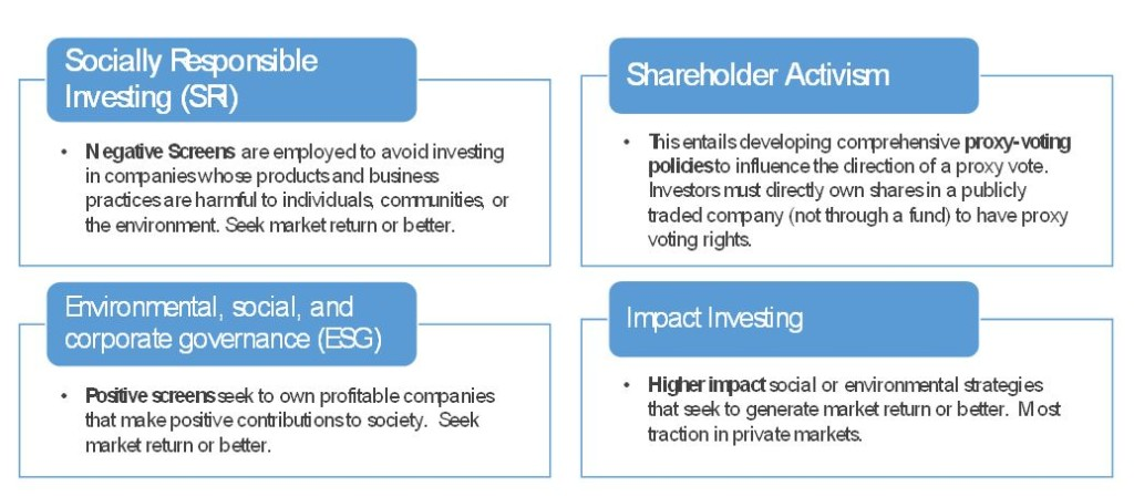 shareholder activism examples